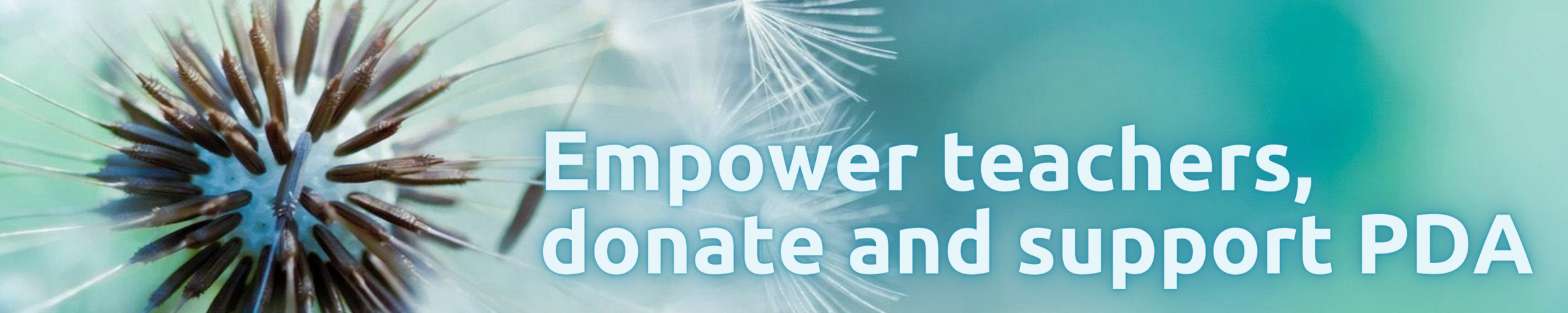 Professional Development Aid Fund and BELTA  Travel Grants